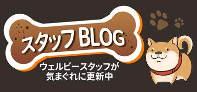 WELLBE DOG SCHOOL ( ウェルビードッグスクール)のブログ